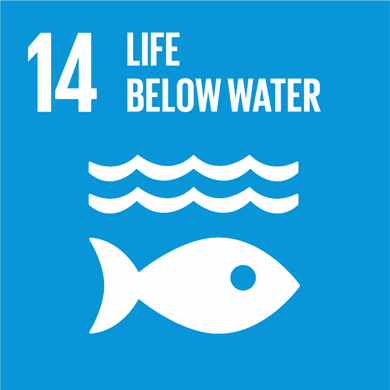 Goal 14: Conserve and sustainably use the oceans, seas and marine resources Image